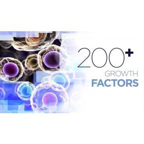 G Factors® สร้างเนื้อ  เติมเต็มหลุมสิวทั่วหน้า  + แผลเป็น